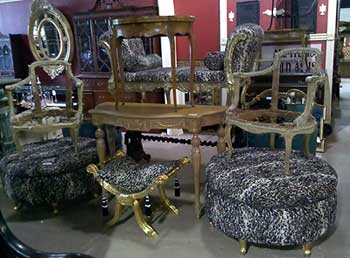 A Set Made Of Some Unidentifiable Spotted Animal Print.