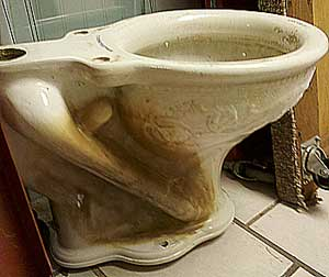 A Fancy Antique Toilet Bowl Auction Finds