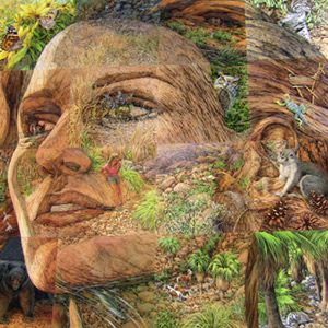 Bev doolittle s quot the earth is my mother quot which accompanied a book
