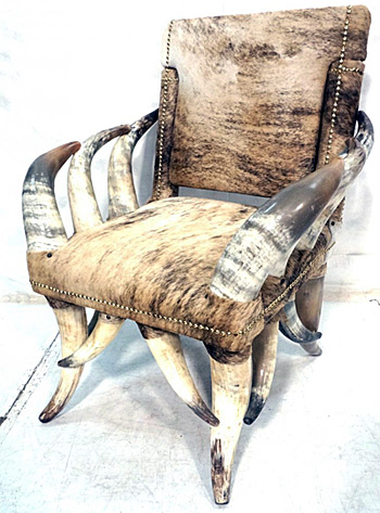 What S The Allure Of A Steer Horn Chair Auction Finds