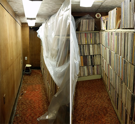 Rows of vinyl albums in the basement.